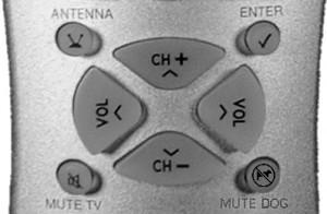 200604 LM remote